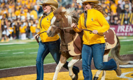 TRADICIONES Y MASCOTAS: WYOMING COWBOYS